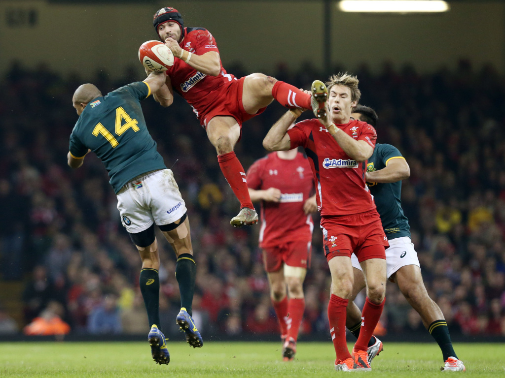 2014 Castle Lager Outgoing Tour: Wales v South Africa