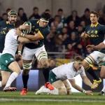 Springboks unveil venues for Ireland tour